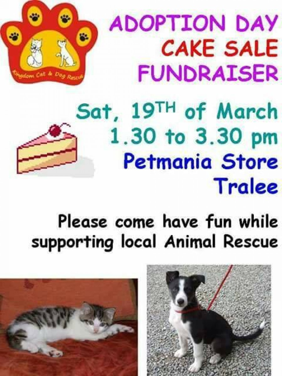 Cake Sale Fundraiser at Petmania